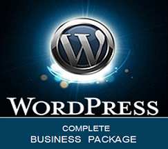 WordPress turnkey business websites.